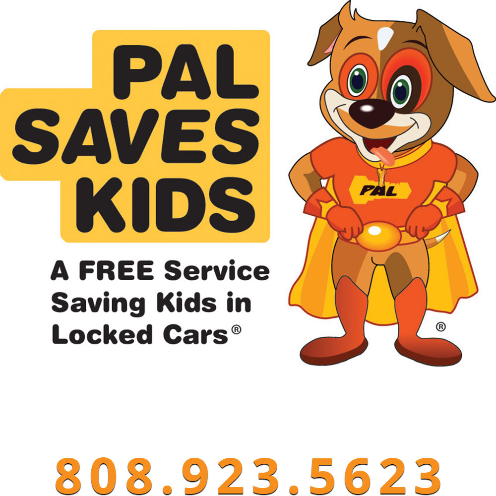 graphic of pal saves kids